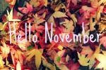 Мероприятия ноября