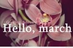 Мероприятия марта
